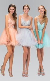 A-Line Illusion Appliqued Short Mini Sleeveless Scoop-Neck Tulle Dress