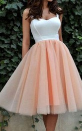 Sleeveless A-line Ball Gown Tea-length Straps Pleats Satin Organza Homecoming Dress