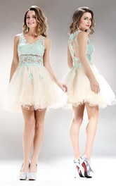 A-Line Illusion Appliqued Mini V-Neck Tulle Sleeveless Lace Dress