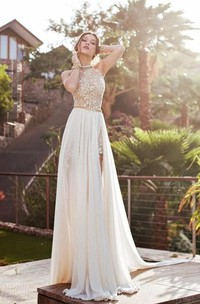 Sleeveless Es Brush-Train Princess A-Line Chiffon Gown